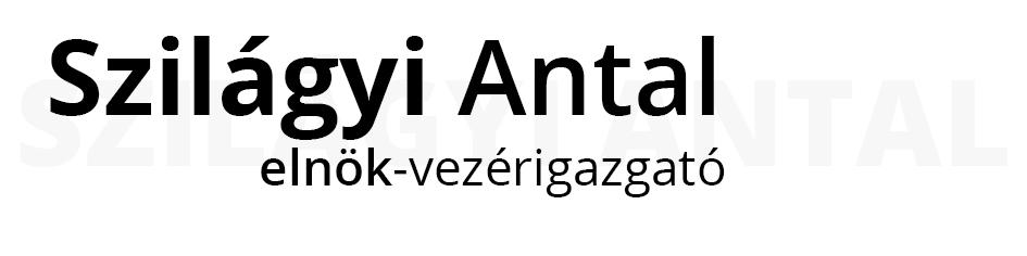 Szilágyi Antal - elnök